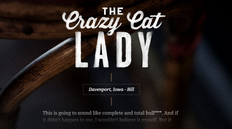 Improve your copywriting through the use of stories. And crazy cat ladies.