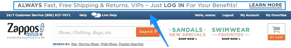 Zappos USP Website