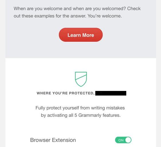 Grammarly Premium 2